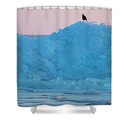 Eagle On Ice Mackinaw City 2261803 Shower Curtain