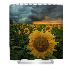 Shower Curtain featuring the photograph Eccentric  by Aaron J Groen