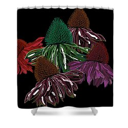 Echinacea Flowers With Black Shower Curtain