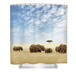 Elephant Group In The Grassland Of The Masai Mara Shower Curtain
