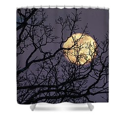 Embracing The Moon Shower Curtain