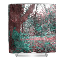 Emmaus Community Park Trail With Large Tree Shower Curtain