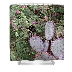 Shower Curtain featuring the photograph Ensconced Prickly Pear 5 by Lynda Lehmann