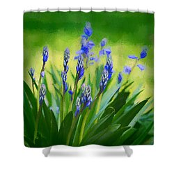 Essense Of Spring Shower Curtain