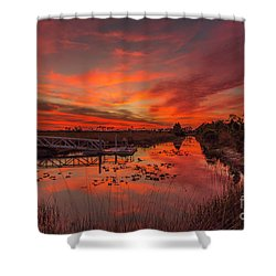 Explosive Sunset At Pine Glades Shower Curtain
