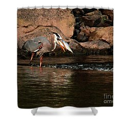Shower Curtain featuring the photograph Eye To Eye by Debbie Stahre