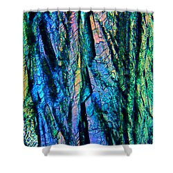 Fading Splendor Shower Curtain