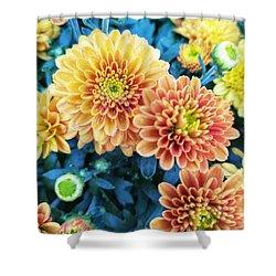 Shower Curtain featuring the photograph Fall Chrysanthemums Autumn Orange Peach by Rachel Hannah