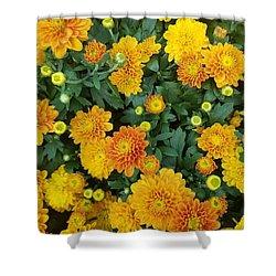 Shower Curtain featuring the photograph Fall Chrysanthemums Autumn Orange by Rachel Hannah