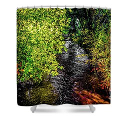 Shower Curtain featuring the photograph Fall Foliage by Jon Burch Photography