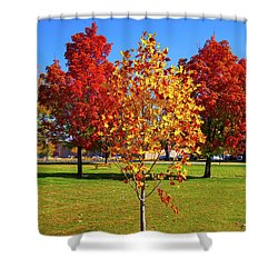 Fall In Boise Shower Curtain