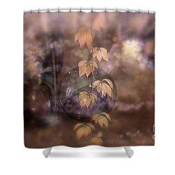 Fall Magic Shower Curtain