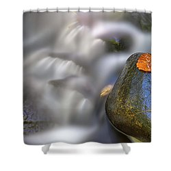 Shower Curtain featuring the photograph Fallen Leaf And Mountain Stream by Rick Berk