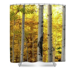 Shower Curtain featuring the photograph Fall's Visitation by Rick Furmanek