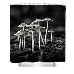 Fanciful Fungus-2 Shower Curtain