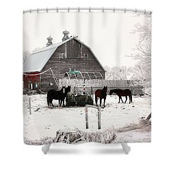 Feed Shower Curtain
