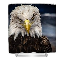 Fierce Shower Curtain