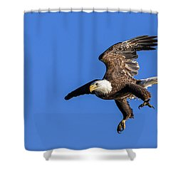 Shower Curtain featuring the photograph Final Approach by Lori Coleman