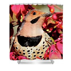 Shower Curtain featuring the photograph Fire Bush Flicker by Debbie Stahre