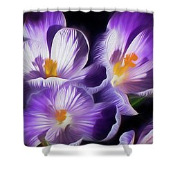 Shower Curtain featuring the mixed media First Crocuses On The Sunny Side Of The Street by Lynda Lehmann