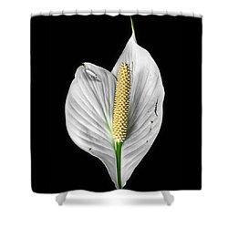 Flawed Beauty Shower Curtain