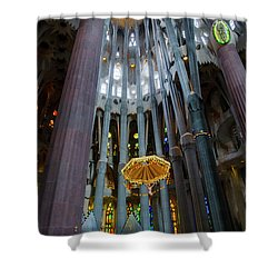 Shower Curtain featuring the photograph Flight Of Fancy 2 by Alex Lapidus