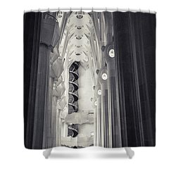 Shower Curtain featuring the photograph Flights Of Fancy 1 by Alex Lapidus