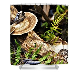 Florida Forest Shower Curtain