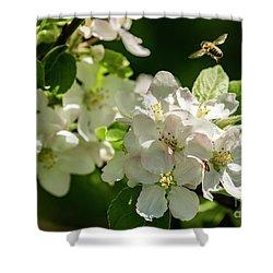Flower Hopping Shower Curtain
