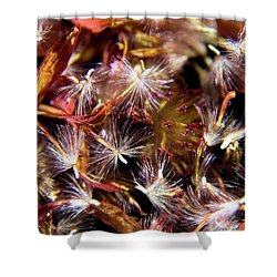 Flower Seeds-1 Shower Curtain