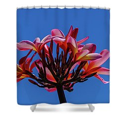 Flowers In Clear Blue Sky Shower Curtain