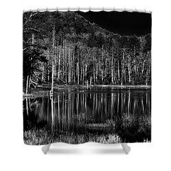 Shower Curtain featuring the photograph Fly Pond Reflection by David Patterson