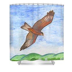 Flying Hawk Shower Curtain