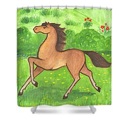 Foal In The Meadow Shower Curtain
