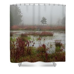 Shower Curtain featuring the photograph Foggy Morning At Cloverdale Farm by Kristia Adams