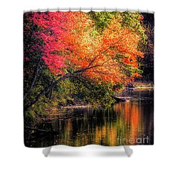 Foliage Over Forge Pond Shower Curtain