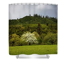 Follow The Light In The Forest Shower Curtain