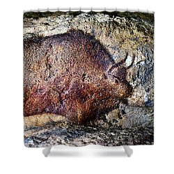 Font De Gaume Bison Shower Curtain