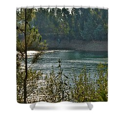 Forest Lake In Amendoa Shower Curtain