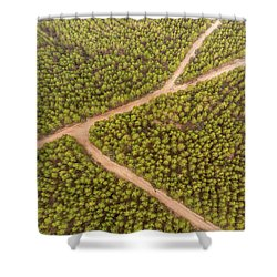 Shower Curtain featuring the photograph Fork by Okan YILMAZ