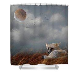 Fox In Moonlight Square Shower Curtain