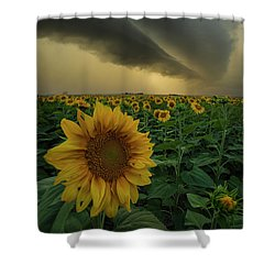 Shower Curtain featuring the photograph Frailty  by Aaron J Groen