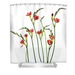 Freesia 3 Shower Curtain