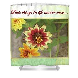 Friendship, A Smiling Indian Blanket Flower  Shower Curtain