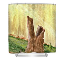 From Ruins Comes New Life Shower Curtain