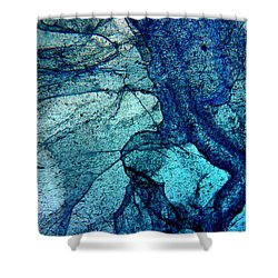 Frozen In Blue Shower Curtain