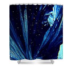 Frozen Night Shower Curtain