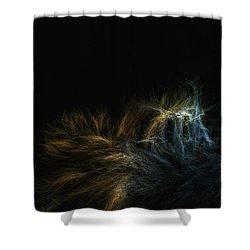 Fur Shower Curtain