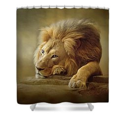 Shower Curtain featuring the digital art Gentle Soul by Nicole Wilde