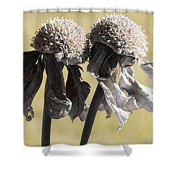 Ghost Sisters Shower Curtain